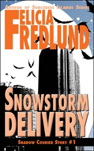 SnowstormDelivery-ebook-cover-web