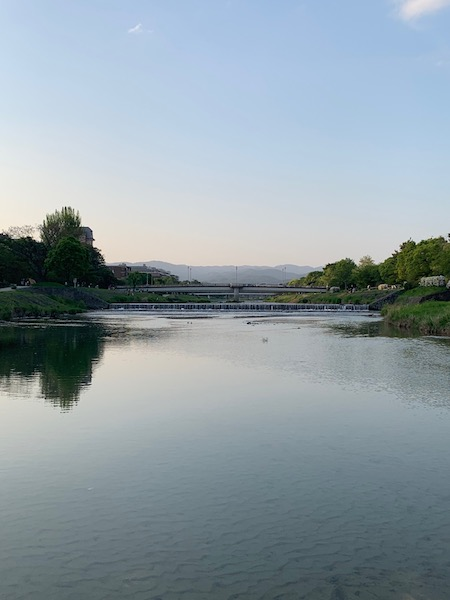 Kamogawa river in Kyoto during the day