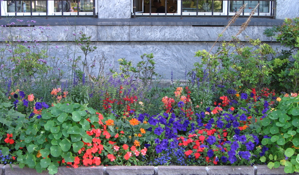 Pretty flowerbed 2006 in Oslo Norway
