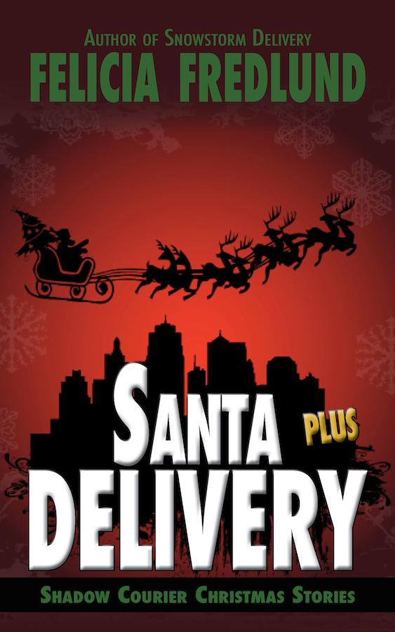 Santa Delivery Plus Book Cover